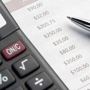 Budgets And Financial Reports (ES013)